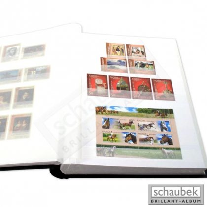 stock book, 64 white pages, 230 mm x 310 mm green