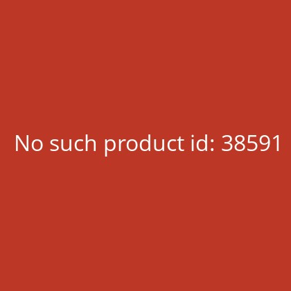 MICHEL-Catalogue Germany-Specialised 2020 Vol. 2